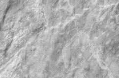 La superficie del primer en el modelo de piedra en la pared de ladrillo de piedra en el jardín texturizó el fondo en tono blanco  Fotos de archivo libres de regalías