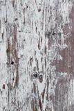 La superficie di un bordo di legno Fotografia Stock