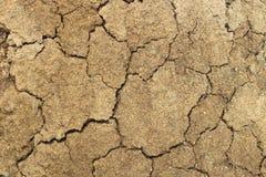 La superficie di un molehill. Fotografie Stock Libere da Diritti