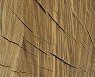 La superficie irregolare un il pezzo di legno Immagine Stock