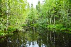 La superficie reservada del río entre los bancos demasiado grandes para su edad imagen de archivo