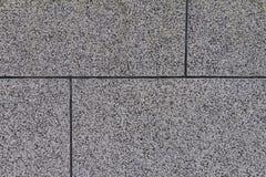 La superficie schiacciata della pietra della parete, separata dai quadrati Fotografie Stock Libere da Diritti