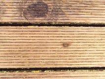 La surface du plancher en bois dur a traité avec un scelleur fongicide et insecticide photo stock