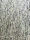 la surface grise du poteau en bois image libre de droits