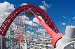 La suspensión moderna cable-permanecía el puente Fotografía de archivo