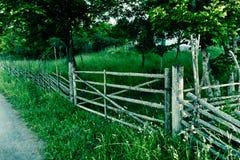 La svezia rurale Fotografia Stock