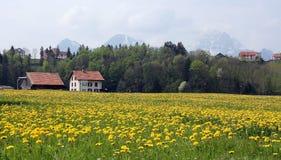 La Svizzera Fotografie Stock