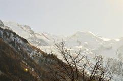 La Svizzera e belle sommità delle alpi sotto neve Immagine Stock