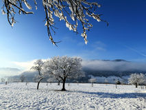 La Svizzera - Oberägeri Fotografia Stock