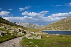 La Svizzera - paesaggio della montagna Immagini Stock
