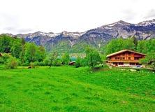 La Svizzera: paesaggio rurale Fotografia Stock Libera da Diritti