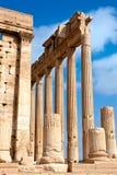 La Syrie - Palmyra (Tadmor) Photos libres de droits