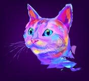 La tête colorée mignonne de chat Photographie stock libre de droits