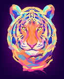 La tête colorée mignonne de tigre Image libre de droits