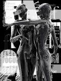 La tête d'un cyborg sur un fond noir illustration 3D Photo libre de droits