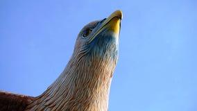 La tête de la statue d'aigle Photos stock