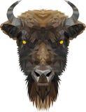 La tête du bas poly bison Image libre de droits