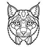 La tête sauvage de mascotte de lynx a isolé schéma croquis Photo libre de droits