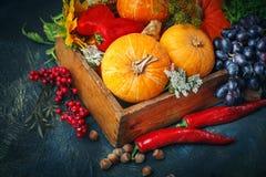 La tabla, adornada con las verduras y las frutas Festival de la cosecha, acción de gracias feliz Fotos de archivo