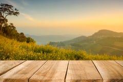 La tabla de madera del escritorio está vacía para el presente al producto en la naturaleza del bosque Foto de archivo
