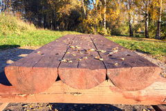 La tabla de madera larga de abre una sesión un parque Fotografía de archivo libre de regalías