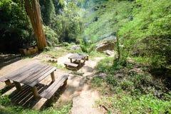 La tabla y el banco de madera en el bosque Imagen de archivo libre de regalías