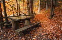 La tabla y los bancos cerca se arrastran cubierto con las hojas anaranjadas Fotos de archivo