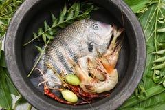 La tache et les crevettes roses crues fraîches de perle pêchent de l'Inde du Kerala Photo stock