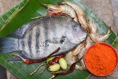 La tache et les crevettes roses crues fraîches de perle pêchent de l'Inde du Kerala Images libres de droits
