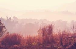 La Tailandia del Nord Fotografie Stock