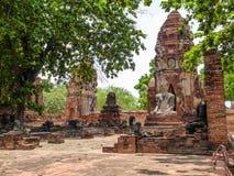 La Tailandia - giardini del tempio di Ayutthaya fotografia stock