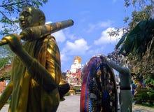 La Tailandia - Koh Samui Immagine Stock Libera da Diritti