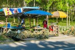 La Tailandia, Phuket - 19 febbraio 2017: mercato di strada in Tailandia Ananas da vendere Immagine Stock Libera da Diritti