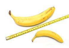 La taille importe ? Photos libres de droits
