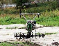 la talle fonctionnante de moteur-cultivateur en parc de Gatchina est sur le travail de attente de la terre image stock