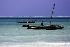 La Tanzania - Zanzibar Fotografie Stock