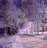 La tarde del invierno Fotos de archivo libres de regalías