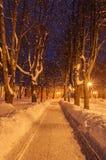 La tarde del invierno Foto de archivo libre de regalías
