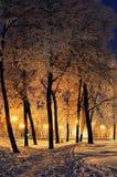 La tarde del invierno en el parque de la ciudad Imagenes de archivo