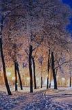 La tarde del invierno en el parque de la ciudad Imágenes de archivo libres de regalías