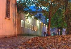 La tarde romántica con las luces de calle que brillaban a lo largo de la pared vieja y del camino se acurrucó las hojas de otoño  Imágenes de archivo libres de regalías