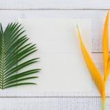 La tarjeta blanca en blanco con las hojas y la ave del paraíso del helecho florece imagenes de archivo