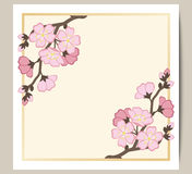 La tarjeta de felicitación con una rama de Sakura rosado florece Imagen de archivo libre de regalías