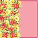 La tarjeta de felicitación del ejemplo con la acuarela de las rosas se puede utilizar como tarjeta de la invitación Foto de archivo