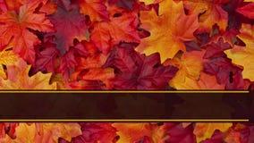 La tarjeta de felicitación feliz de la acción de gracias animó almacen de video