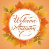 La tarjeta de la invitación y del aviso con el marco floral con las hojas de otoño y el otoño agradable mandan un SMS Frontera ad Imagenes de archivo