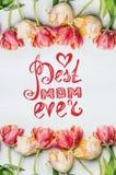 La tarjeta de letras de día de madres, los tulipanes preciosos con agua cae, marco floral de la primavera, visión superior Imagen de archivo