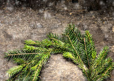 La tarjeta de Navidad con la guirnalda del abeto ramifica con nieve Imagen de archivo libre de regalías