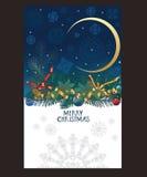La tarjeta de Navidad con los copos de nieve en el cielo nocturno, pino ramifica Imagen de archivo