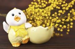 La tarjeta de pascua con el pollo y la primavera de Pascua florece Imagen de archivo libre de regalías